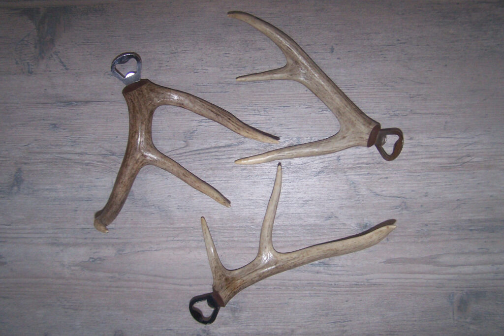 Antler Bottle Opener - Three Tine