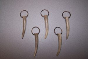 Antler Key Chains